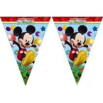 Zászlófüzér Mickey, 2,3m, 81515