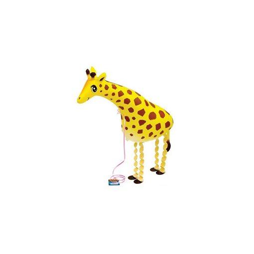 Sétáló lufi - zsiráf